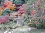 浄瑠璃寺三重塔.jpg